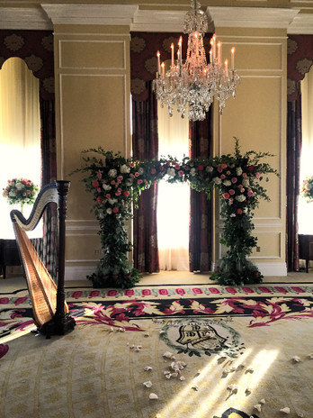 Wedding for a friend and fellow harpist