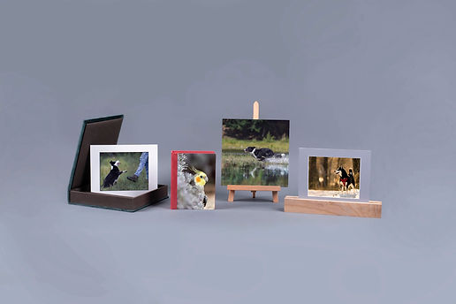 Foliobox Acrylic 1.jpg