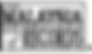 malaysia-book-of-records-logo-dark.png