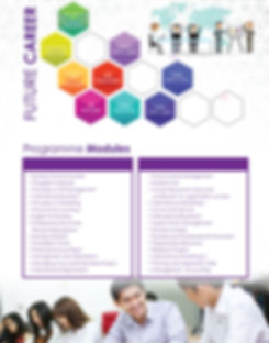Diploma in international business or diploma in global business management study programme modules