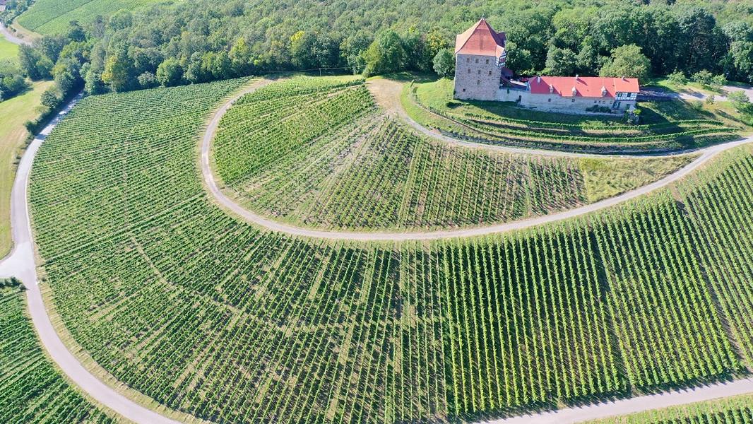 Burg Wildeck 5(1).JPG
