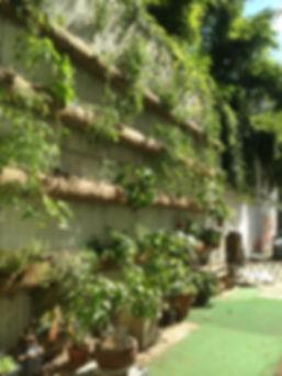 Jardin 6.JPG