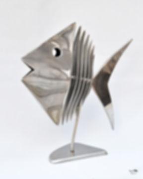 poisson miroir.jpg