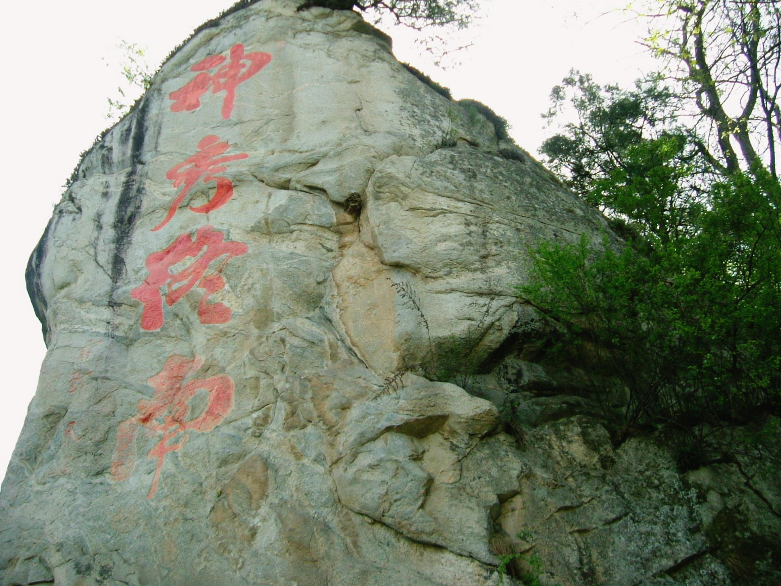 慈天必生宮 2003朝聖之旅62
