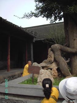 慈天必生宮 2008朝聖之旅063
