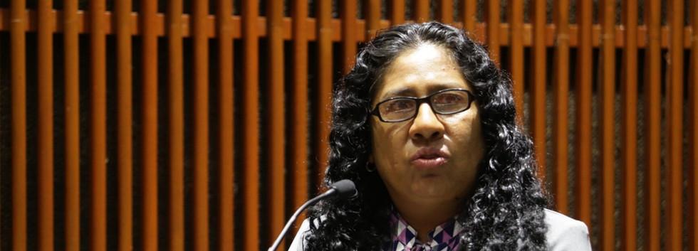 Diputada Rosario Merlin García