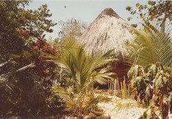 09 Cottage 6d