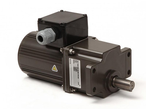 Panasonic Gearbox Motor