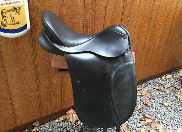 Black Country Eden Dressage 2409-U