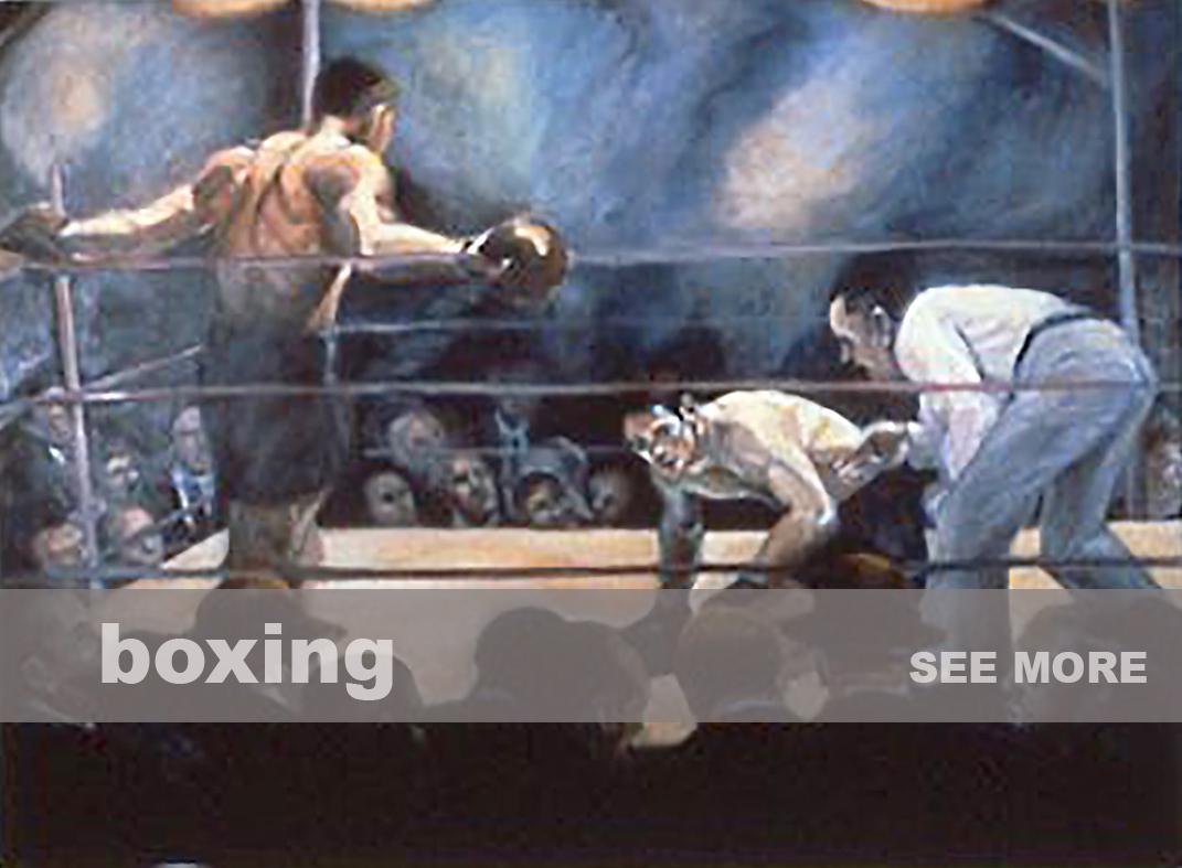 boxer2