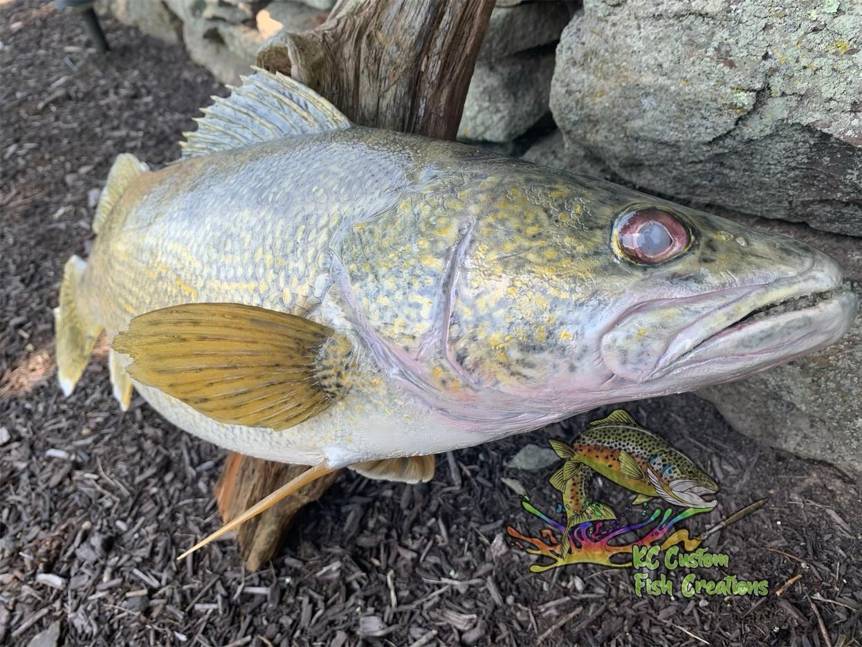 KC Custom Fish Creations