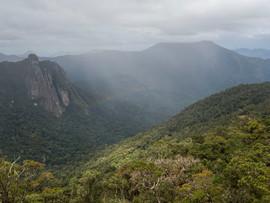 Rainforest Rainbow in Marojejy