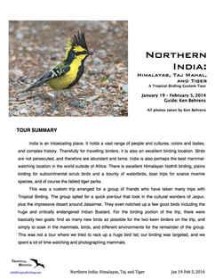North India Custom