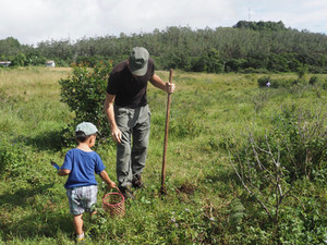 Ken and his son planting trees