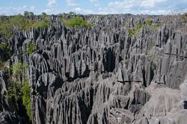 Tsingy Landscape