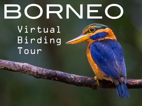 BORNEO Virtual Tour