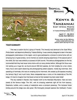 Tanzania & Kenya Custom