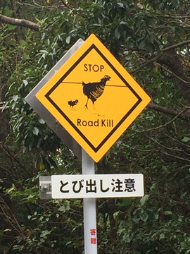 Okinawa Rail sign