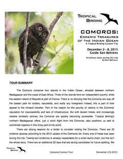 Comoros Custom