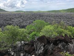 Tsingy of Ankarana - eroded limestone badlands