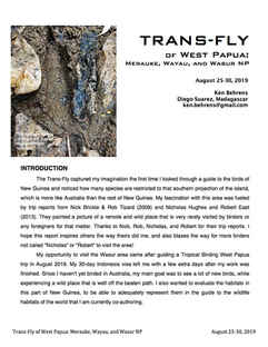 Trans-Fly of West Papua