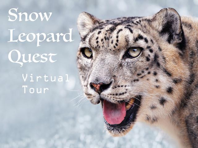 SNOW LEOPARD Virtual Tour