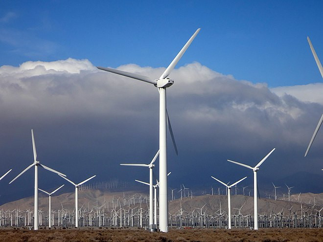 Wind Farms, Oil Exploration and Fisheries