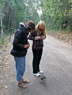Ronell and Jamie looking at Siamese Fireback. Pretty tame!