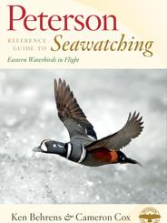 Seawatching: Eastern Waterbirds in Flight