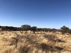 Mokhala National Park, South Africa