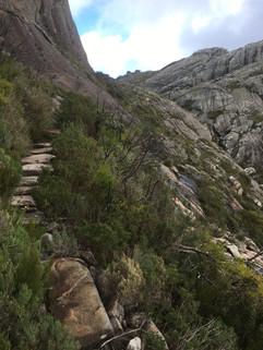 Trail up Peak Boby
