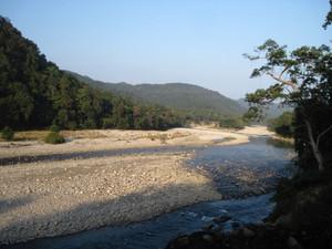 River in Corbett National Park