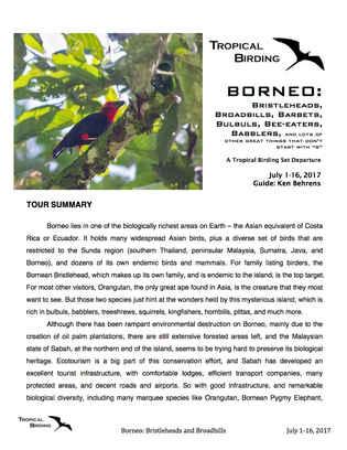 Borneo Set-Departure