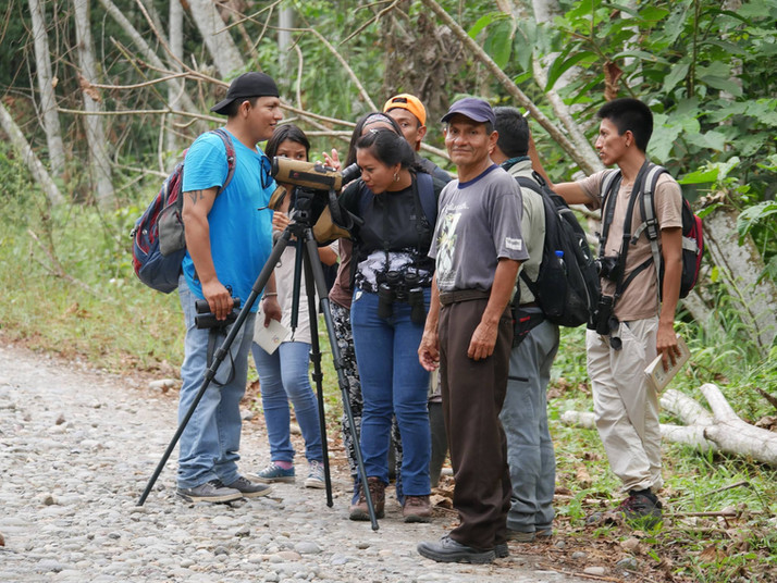 Bird Guide Training