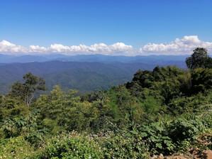 Nice view at Doi Phu Kha NP