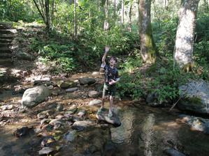 Felix exploring a mountain stream