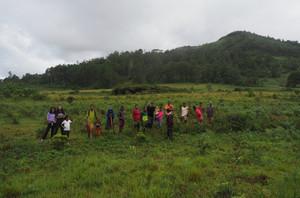 Amber Mountain reforestation crew