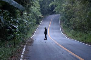 Felix road birding