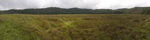 Huge marsh at Bemanevika
