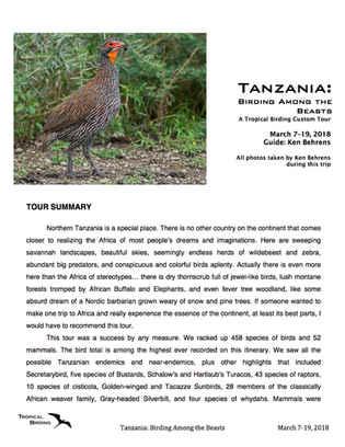 Tanzania Custom