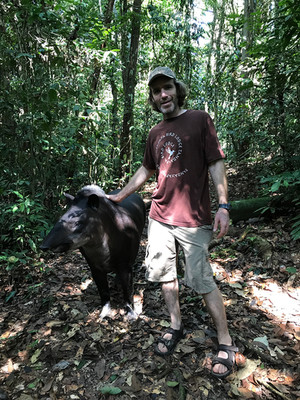 Young Charley with a tame Lowland Tapir in Peru
