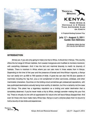 Kenya Custom
