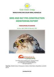 Manlai WSF report Mongolica consulting_28 April 2021-cover.jpg