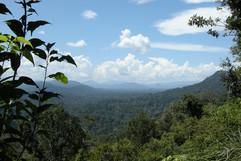 Taman Negara Panorama