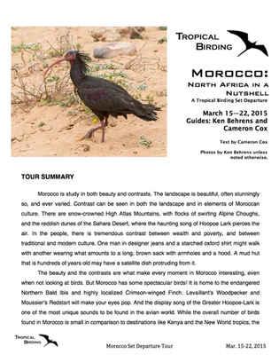 Morocco Set-Departure