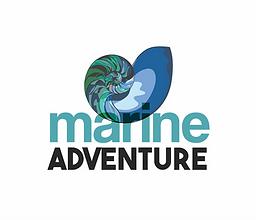 nautilus logo white bg.png