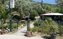 TavernaAbelaki01