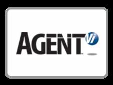 agent-VI.png