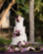 MiGoodies Bakesale Hexagon Wedding Cake.jpg