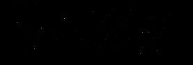 TSD Logo Black Modernline.png